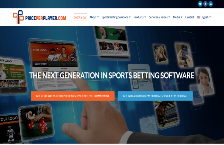 Review of the PricePerPlayer.com Sportsbook Pay Per Head Service